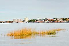 Vue de la ville de Rimouski. (Gaetan L) Tags: baslaurent gaspésie rimouski nikond7000 route132 provincedequébec fleuvestlaurent rivière river ville city eau water littoral