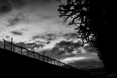 Il y a des murs derrière lesquels on croit se sentir en sécurité. Il y a des murs pour enfermer, isoler, pour tuer la liberté. Il y a ces murs invisibles qui nous écrasent et nous anéantissent. Les Murs. (LACPIXEL) Tags: mur wall pared enfermer isoler tuer matar kill liberté freedom libertad nuage cloud nube prison cárcel ciel sky cielo encerrar shutup shutaway isolate aislar anéantir écraser annihilate aniquilar noiretblanc sony flickr lacpixel poissy