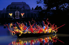 034 2005 Dale Chihuly Glass at Kew October (Trinity Trees) Tags: dale chihuly glass