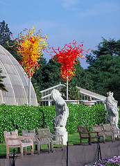 031 2005 Dale Chihuly Glass at Kew October (Trinity Trees) Tags: dale chihuly glass
