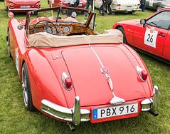 1955 Jaguar XK 140 (Gösta Knochenhauer) Tags: 2019 may panasonic lumix fz1000 dmcfz1000 gärdesloppet prins bertil memorial classic vintage veteran car vehicle stockholm sverige sweden schweden suède svezia suecia mfcfz1000 p9180207nik p9180207 nik 1955 jaguar xk 140 leica lens