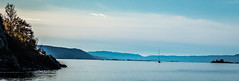 Lonely sailboat on the fjord (Thor Edvardsen) Tags: sailing sailboat fjord fall water sea seascape seaview oslo norway norge oslofjorden