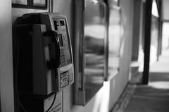 Discovery Bay, Hong Kong. by Leica M10-D, Leica Summilux 50mm F/1.4 v1 (duncanwong) Tags: summilux 50mm 14 f14 v1 silver chrome ltm m mount bayonet leica m10 m10d d screw discovery bay hong kong telephone phone bokeh