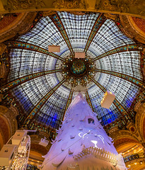 Dome and Glass of Galeries Lafayette, Paris (Gilles B. Photographe) Tags: france architecture skyline ornate mall romantic shop fashion center beauty xmas holiday dome french circle iledefrance window galeries celebration tree ceiling monument sale roof sky glass light business luxury tourism paris retail batiment european building art shopping landscape people city design cityscape lafayette christmas capital indoor luxurious famous blue travel interior beautiful bright galleries festive history consumerism gallery elegant europe store skylight