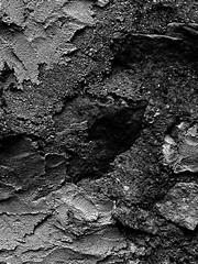 Abstract (paulineguetvitte1) Tags: wall art abstract noiretblanc blackandwhite details détails murs mur