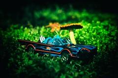 Batmobile (Crusty Da Klown) Tags: batmobile mushroom hotwheels car toy nature outside outdoors colorful brilliant bright green vignette canon flickr contrasts vibrant closeup close