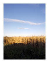 (Jordane Prestrot) Tags: jordaneprestrot field champ campo nuage cloud nube ombre shadow sombra voiture car coche ♎