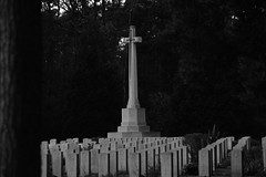 Brookwood 7 November 2019 001 (paul_appleyard) Tags: brookwood commonwealth war graves memorial november 2019 surrey