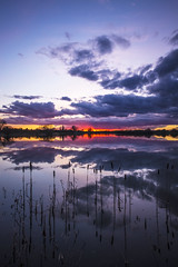Colourful Sunset (CraDorPhoto) Tags: canon6d nature outdoors outside sky clouds reflection colour landscape waterscape reeds lake water uk cambridgeshire sunset