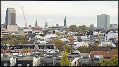Hamburg Roofs – Grindel, Uni-Viertel & City• 96 Megapixel – come on and zoom in! (/RealityScanner/) Tags: germany deutschland hamburg skyline panorama reality realität documentation dokumentation baum tree urban city stadt roofs dächer türme towers lumixdmcs1 96megapixel highresolution