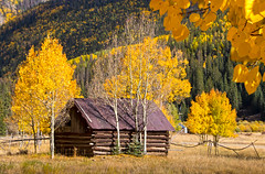 Lonely Cabin (valentina425) Tags: capitol colorado fall cabin mountains aspens trees forest engineerpass capitolcity
