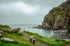 Photo of The Cove