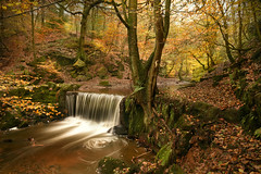 Summer's retreat (PentlandPirate of the North) Tags: knypersley waterfall autumn fall leaves staffordshire greenwaybankcountrypark countryside river stream