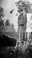 Sans titre (Clément Emmanuel) Tags: raté argentique pellicule ilford 6x6 120 bourgogne été summer problem film probleme nature rose noir blanc nb pierre arbre tree yashica a
