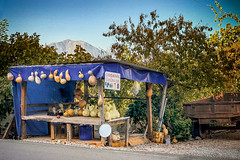 Organik (Melissa Maples) Tags: adrasan turkey türkiye asia 土耳其 apple iphone iphonex cameraphone autumn food market stall vendor roadsidestand türkçe text sign organic gourds mountain