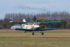 HA-ANT (Andras Regos) Tags: aviation aircraft plane fly airport lhny nyíregyháza antonov pzl an2 an2td colt takeoff birds