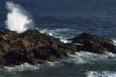 Sea swing (mara.arantes) Tags: sea wave seascape mar rochas water nature natureza naturaleza splash rocky bahia brazil travel