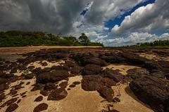 East Point Beach, Darwin (Markus Branse) Tags: small storm east point beach darwin gewitter regen weer wetter meteo weather sturm strand meer sea see wolke wolken clluds clolud himmel sky travel urlaub sand felsen basalt schauer shower rain