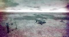 Last Dove (Loegan Magic) Tags: secondlife landscape blackandwhite monochrome country western grass