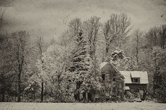 The Homestead B&W (Roger Daigle) Tags: rural abandoned farms bw snow nikon