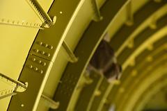 C-47 Fuselage Structure (Ian E. Abbott) Tags: thatsallbrother douglasaircraft douglas c47a c47 dc3 skytrain dakota 4292847 12693 n47tb commemorativeairforce caf centraltexaswing wingsoverdallas krbd rbd formers bulkheads stringers rivets aircraftstructure