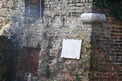 IMGP4692 (hlavaty85) Tags: venezia venice benátky san michele arcangelo michael campanilla zvonice tower věž mazzorbo