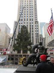 2019 Christmas Tree Rockefeller Center waiting for decor and filling out 9493 (Brechtbug) Tags: 2019 christmas tree rockefeller center waiting be decorated filled out with extra green branches nyc 30 rock new york city standing up above ice rink without scaffolding before fixing holiday decoration ornaments 11092019 around noon lights lites light oversize load ornament saturday