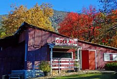 Cider Mill Autumn, Oak Glen, CA 11-19 (inkknife_2000 (10.5 million + views)) Tags: oakglenca inlandempire fall autumn fallleaves turningleaves apple appleorchard usa landscapes dgrahamphoto snowlineorchard california
