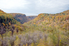 Fall at Letchworth 21:  Tea Table & Eddy's Overlook (Adventure George) Tags: acdseephotostudio autumn biology earth fall fallcolors geneseeriver letchworthstatepark nystatepark newyorkstate nikond750 northamerica northeastus october park photogeorge photoshoot statepark us usa unitedstatesofamerica westernnewyork america ecosystem flora gorge landscape naturalworld nature outdoor river rivergorge riverscene rural scenic scenicdrive upstatenewyork castile newyork teatableeddysoverlook