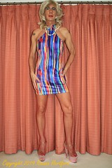 000IMG_8094 (Roxana Hertford) Tags: crossdresser cd sissy stockings slut string tgirl tgurl transvestite tranny tv