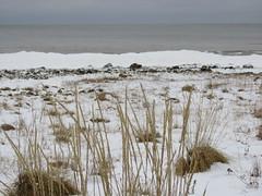 Hailuoto (RundgrenR) Tags: winter hailuoto finnland