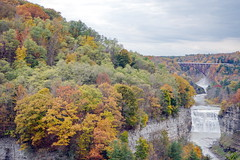 Fall at Letchworth 43:  Inspiration Point (Adventure George) Tags: acdseephotostudio autumn biology earth fall fallcolors geneseeriver letchworthstatepark nystatepark newyorkstate nikond750 northamerica northeastus october park photogeorge photoshoot statepark us usa unitedstatesofamerica westernnewyork america ecosystem flora gorge landscape naturalworld nature outdoor river rivergorge riverscene rural scenic scenicdrive upstatenewyork castile newyork inspirationpoint