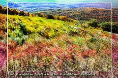 Kingdom Within, Kingdom Without (karl.wolfgang (Appalachian Son)) Tags: christianity gnosis autumn virginia nature borders trees skylanddrive shenandoah nationalpark