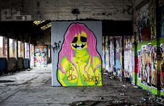@Brayk_graff Pink Haired lady takes centre stage again (PDKImages) Tags: graffiti sheffieldstreetart sheffield sheffieldgraffiti streetart urbanart wallporn abandoned attercliffe