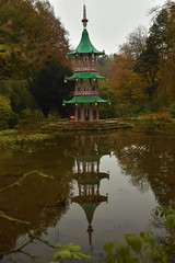 Reflections of the Pagoda (CoasterMadMatt) Tags: altontowers2019 altontowersresort2019 altontowers altontowersresort alton towers resort 2019season themepark amusementpark theme amusement park parks staffordshireattractions attractionsinstaffordshire themeparksinengland englishthemeparks altontowersgardens altontowersgarden gardens garden landscapedgardens landscapegarden landscaped landscapes englishgardens gardensinengland chinesepagodafountain pagodafountain chinese pagoda fountain altontowersestate estate grounds altontowershistory altontowersheritage history heritage november2019 autumn2019 november autumn 2019 coastermadmattphotography coastermadmatt photos photographs photography nikond3500