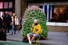 Fall in NYC (GPhace) Tags: 2019 35mm e100 ektachrome100 fall filmphotography kodak manhattan minolta minoltax700 nyc newyorkcity shootfilm x700 filmgrain manualfocus streetphotography