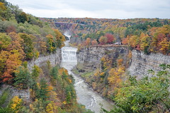 Fall at Letchworth 42:  Inspiration Point (Adventure George) Tags: acdseephotostudio autumn biology earth fall fallcolors geneseeriver letchworthstatepark nystatepark newyorkstate nikond750 northamerica northeastus october park photogeorge photoshoot statepark us usa unitedstatesofamerica westernnewyork america ecosystem flora gorge landscape naturalworld nature outdoor river rivergorge riverscene rural scenic scenicdrive upstatenewyork castile newyork inspirationpoint