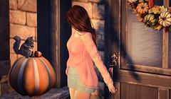 PETRA PRESENTS: MOoH! Penny Dress in Dusk Colors v.11.9 (Petra L Alexander-Valerian) Tags: maitreya mooh slfashion slblog slmodelblogger autumn pewpew applefall trompeloeil sways anlárposes virtualworlds secondlife® deetalez lelutka bento simone ©petralalexandervalerian™ ©petralalexander™