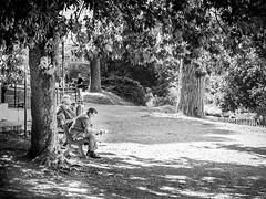 Villa Doria Pamphilj (Ludo Silvagni) Tags: villadoriapamphilj villapanphili viaaureliaantica biancoenero bw blackandwhite rome ludosilvagni park