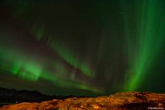 Aurora Borealis (spenson3) Tags: aurora auroraborealis iceland djúpivogur northernlights nightphotography longexposure nikon