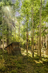 Light on the Sinking Outhouse (asonyphotographer) Tags: crestone colorado unitedstatesofamerica sand dunes national park great greatsanddunesnationalpark landscapephotography outdoors landscape fall hiking offroad nationalpark aspen sony ilce7rm3 7rm3