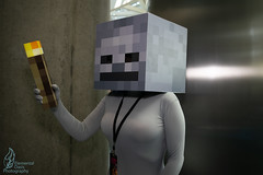 LACC 2019 (Elemental_Oasis Photos) Tags: games cosplayphotography minecraft losangelescomiccon