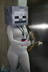 LACC 2019 (Elemental_Oasis Photos) Tags: games minecraft losangelescomiccon cosplayphotography