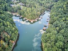 Harris Creek on Lake Lanier (Yer Photo Xpression) Tags: ronmayhew djimavicpro aerial lakelanier georgia northgeorgia water lake tree dock