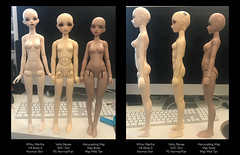 Standing Comparisons (just some dollies) Tags: bjd harucasting maji myou martha volks sdc sdcute renee dolls doll