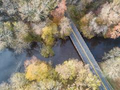 Bridge over the Pocomoke (maryshelsby) Tags: autumn pocomokeriver fallcolors maryland delmarva pocomoke
