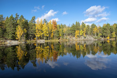 Autumn Colors in Sweden (miguelgalrinho) Tags: lake forest autumn fall sweden