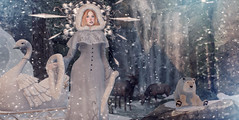 Winter Empress (Sorchiee) Tags: air cavernaobscura enchantment frozen genusproject jinx samtattoos serenitystyle shinystuffs theskinnery thesnowqueen
