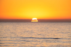 LaPurisma_Beach-7252 (af_caver) Tags: beach california mirrorless fujifilm fujifilmnorthamerica fujifilmxt10 nature landscape fujifilmmirrorless mirrorlessphotography getlost outdoor travel
