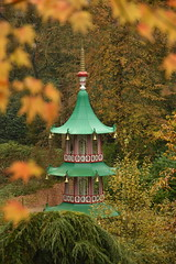 Autumn Surrounds the Pagoda Fountain (CoasterMadMatt) Tags: altontowers2019 altontowersresort2019 altontowers altontowersresort alton towers resort 2019season themepark amusementpark theme amusement park parks staffordshireattractions attractionsinstaffordshire themeparksinengland englishthemeparks altontowersgardens altontowersgarden gardens garden landscapedgardens landscapegarden landscaped landscapes englishgardens gardensinengland chinesepagodafountain pagodafountain chinese pagoda fountain altontowersestate estate grounds altontowershistory altontowersheritage history heritage november2019 autumn2019 november autumn 2019 autumnalcolours autumncolors autumncolours colour staffordshire staffs staffordshiremoorlands westmidlands themidlands midlands england britain greatbritain gb unitedkingdom uk europe coastermadmattphotography coastermadmatt photos photographs photography nikond3500